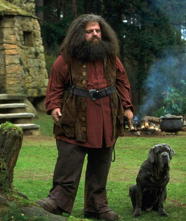 Harry Potter Literature  TV Tropes